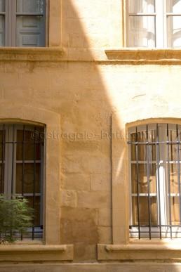 Astragale Villeneuve d'Ansouis (Aix en Provence) - Détail